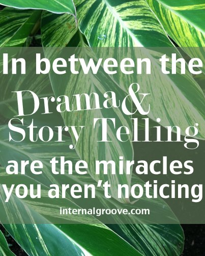 In Between the Drama and the Story Telling Are the Miracles You Aren't Noticing