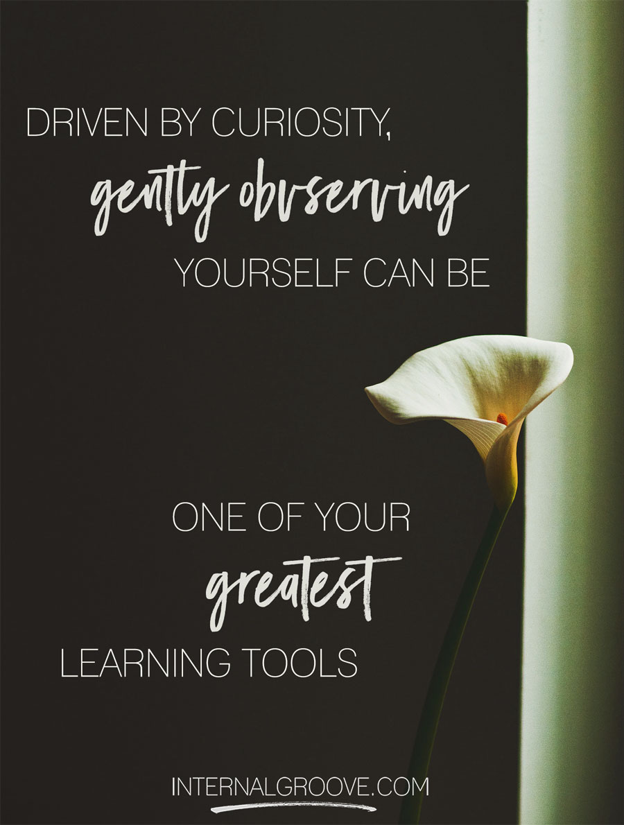 Driven by curiosity, gently observing yourself can be one of your greatest learning tools